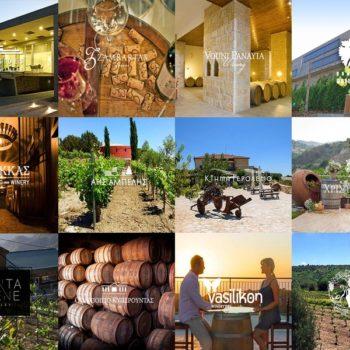 Винный тур на Кипре